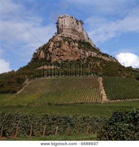 The Vineyards Of Solutré-pouilly