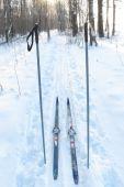 Tourist Skis And Ski Poles poster
