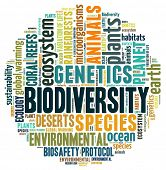 foto of biodiversity  - Biodiversity in word collage - JPG