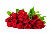 picture of single white rose  - bouquet of bright red roses on a white background - JPG