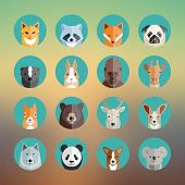 foto of skunk  - Animal Portraits Icon Set in Flat Style on Abstract Background - JPG