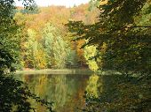 stock photo of bad mood  - beautiful colorful autumn mood is reflected in the Baa-lake near Bad-free forest in the district of Barnim in Brandenburg resist