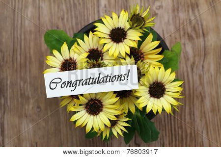 Congratulations card with yellow daisies