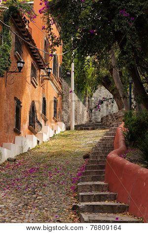 Rustic Street Leading Uphill