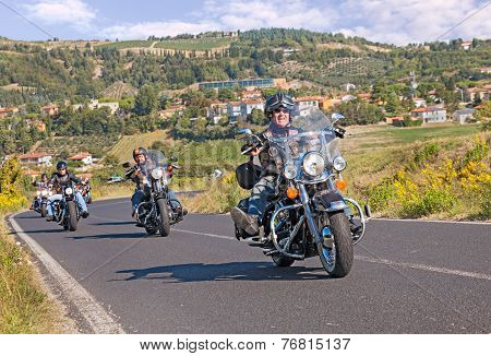 Group Of Bikers Riding Harley Davidson