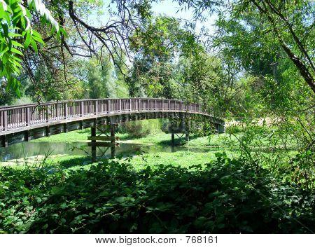 schöne hölzerne Brücke
