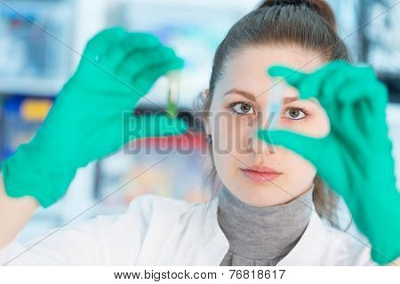 Young student woman medical / scientific researcher / doctor looking at a test tube of liquid in science laboratory