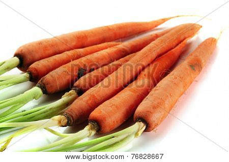 Fresh carrots on white background