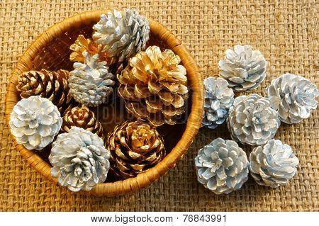 Abstract Pine Cone, Xmas Season