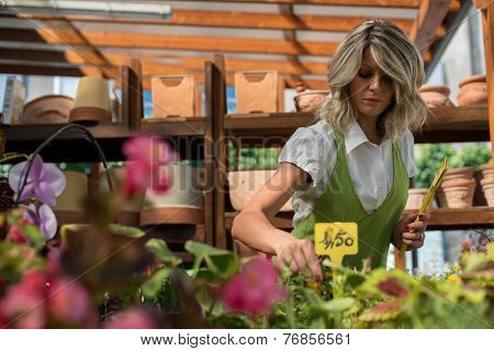 Portrait of a young floristsetting prices on flowers