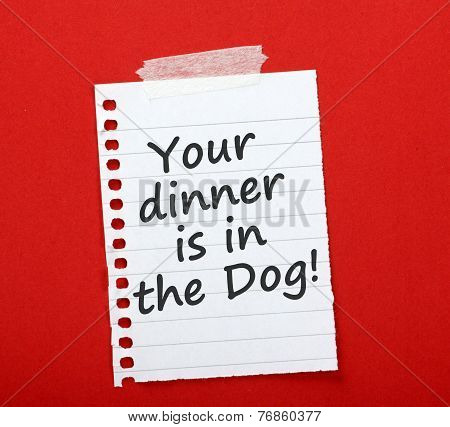 Your Dinner is in the Dog