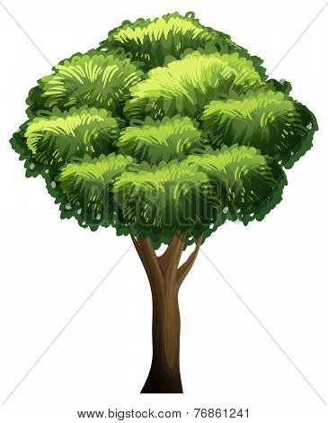 An animated tree flashcard for teaching
