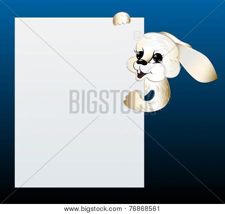 White rabbit looking out of blank sheet of paper.