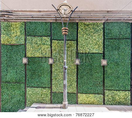 grass wall wall  doors entrance design at Soho Central in Hong Kong