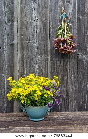 Summer Medical Flowers - St.johns Wort And Echinacea Herbs Bunch On Wooden Wall