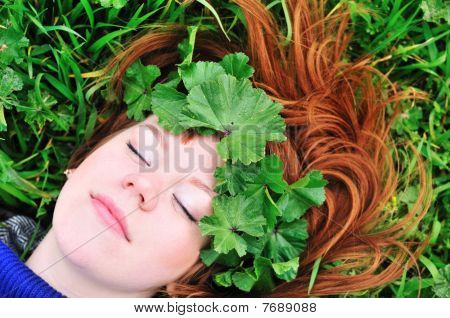 Redheaded Spring