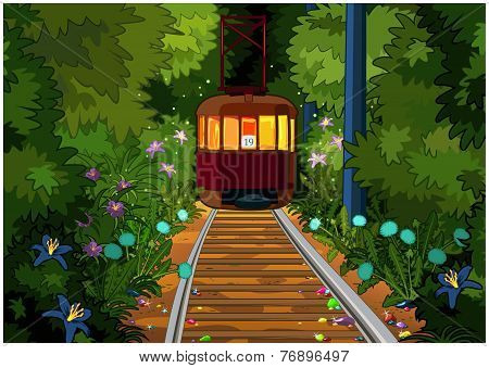 Tram In The Magic Forest.
