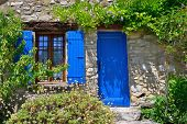 foto of house plants  - France Provence - JPG