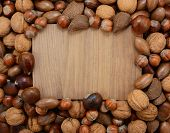stock photo of hazelnut  - Mixed nuts  - JPG