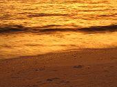 picture of wispy  - Wispy golden sunset wave at Vanderbilt Beach - JPG