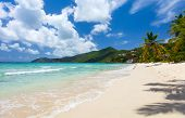 foto of virgin  - Beautiful tropical beach with palm trees - JPG