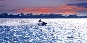 picture of waverunner  - Man on jet ski at sunset - JPG