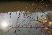 ������, ������: Creek