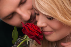 picture of hand kiss  - Selective focus on the great red rose in the hands of happy lovely couple standing on background