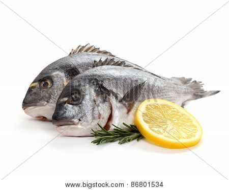 Two Seabream With Lemon Slice And Rosemary