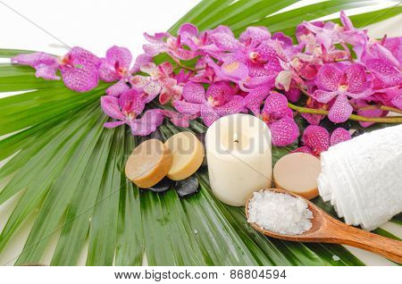 Health care background �¢�?�?tropical spa