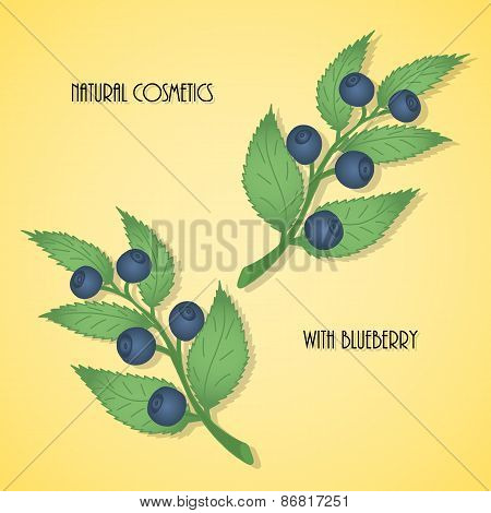 Pattern of blueberry branches with berries