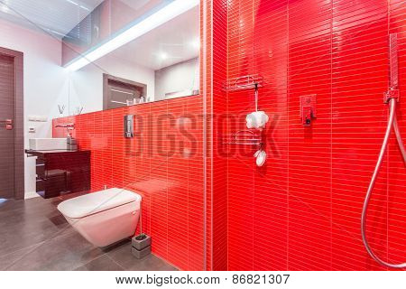 Red Bathroom With Shower
