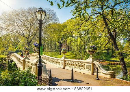 Bow bridge in Central park at sunny day, New York City