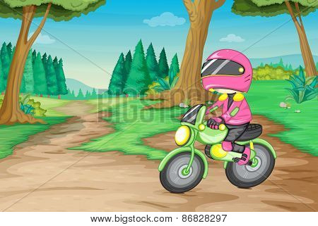 Cross country motorbike in the forest