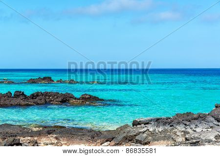 Beautiful Galapagos Seascape