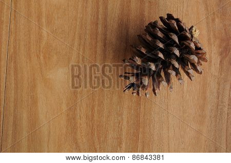 Single Cedar Pine Cone on right corner of wood background