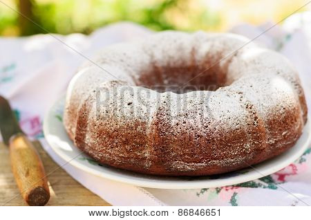 Rustic Style Bundt Cake Sprinkled With Icing Sugar