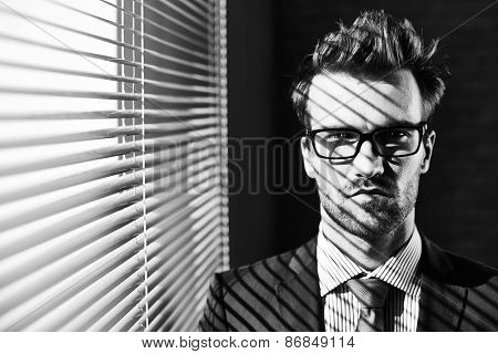 Posh businessman in eyeglasses looking at camera