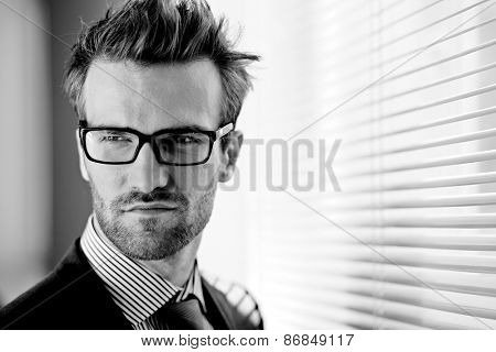 Posh businessman in eyeglasses on background of jalousie