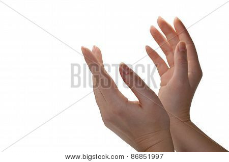 Woman's Hands Isolated On White