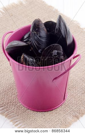 Fresh Mussels In A Pink Bucket