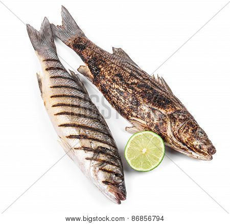 Two grilled fish on white.