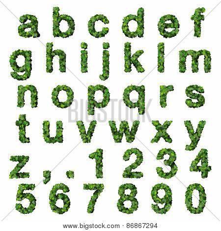 Alphabet with numbers made from green leaves isolated on white background. 3D render.