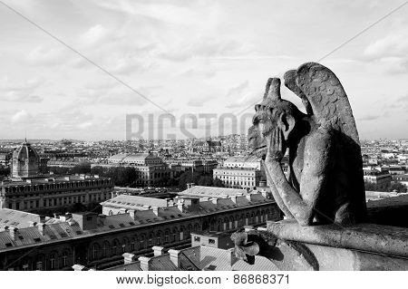 Gargoyle On Notre Dame Cathedral, Black-and-white