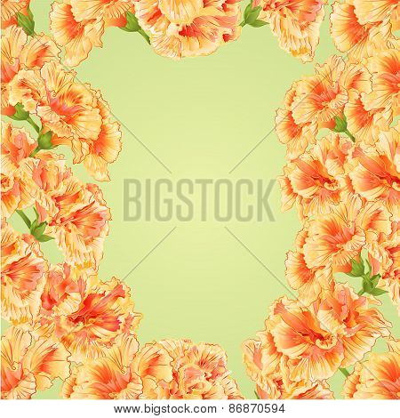 Seamless Texture Frame Of Hibiscus Vector