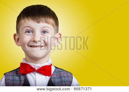 Smiling, Happy, Joyful beautiful little boy , looking at camera