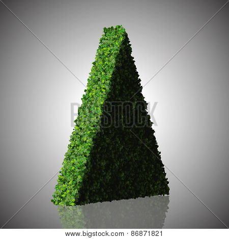 Triangle made from green leaves.