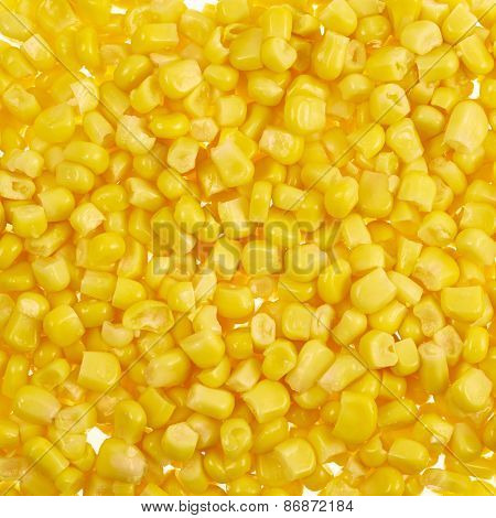 Surface covered with corn kernels