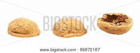 Three walnut shells isolated