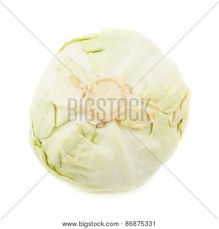 White cabbage isolated
